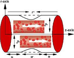 Visco-Inelastic reiner-rivlin fluid